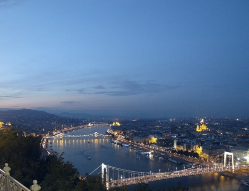 Danube cruise with dinner